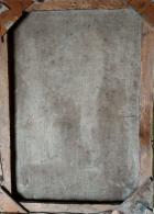 Портрет С.А.Репиной, урожденной Шевцовой 46-33 см., холст, масло  - 1
